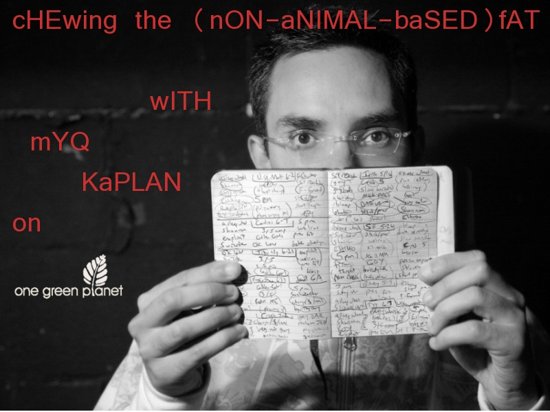 myq kaplan and one green planet vegan comedy