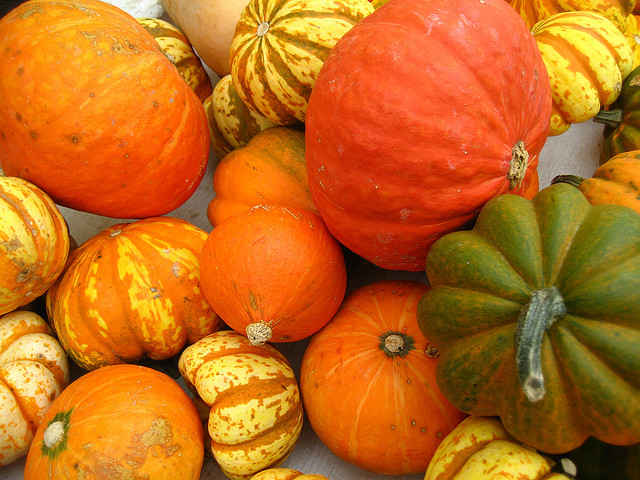 'Tis the Season: Staying Healthy Through the Fall and Winter