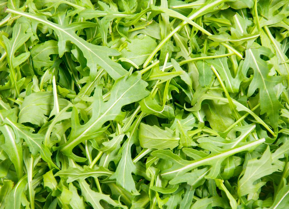 Arugula Kiwi And Fennel Salad Vegan One Green Planet